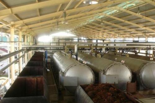 Wah, Ternyata 121 Pabrik Sawit di Riau Miliki Lahan Ilegal