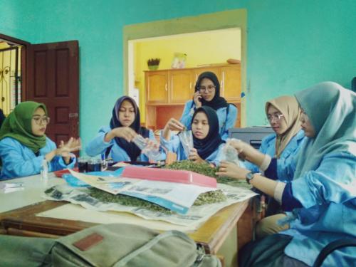 Partisipasi Mahasiswa Kukerta Unri Membantu Inovasi Desa Tanjung Belit dalam Pembuatan Teh Daun Sirsak