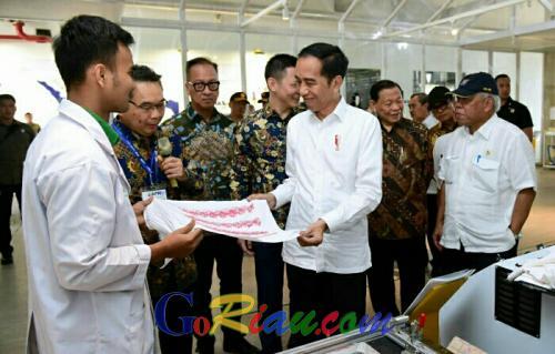 Presiden Jokowi Sambut Baik Investasi APR di Pelalawan Riau