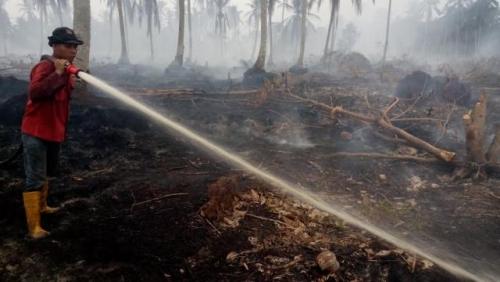 Personil Fire Emergency Response Team PT RAPP Padamkan Kebakaran di Rangsang