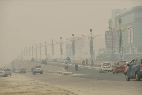 485 Ha Lahan Terbakar, Kabut Asap Selimuti 4 Daerah di Riau