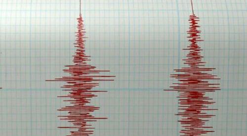 Aktivitas Lindu Meningkat, Gempa Dahsyat Bakal Mengguncang Pulau Jawa? Ini Jawaban BMKG