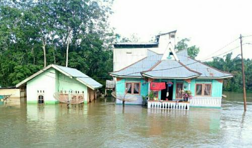 Lubuk Kembang Bunga Ukui Banjir Lagi, Siang Ini Air Masih Rendam Rumah Warga, Akses Jalan Putus