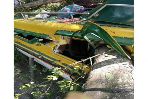 Speedboat Bermuatan 32 Penumpang Tabrak Pepohonan, 5 Tewas, Termasuk Bayi