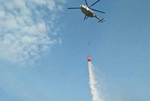 Dua Helikopter Bantu Padamkan Kebakaran di 30 Hektare Lahan di Inhu