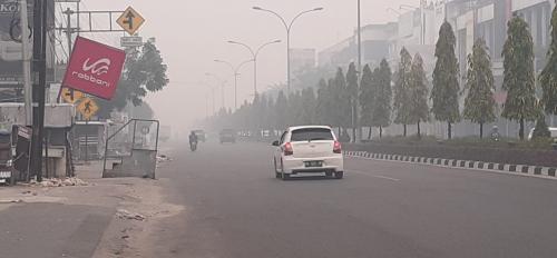 Kabut Asap Masih Pekat, Legislator DPRD Riau Ini Sarankan Posko Kesehatan dan Pengungsian Diperbanyak