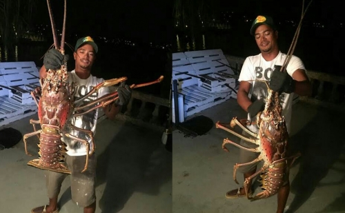 Nelayan Tak Sengaja Tangkap Monster dari Dasar Laut Segi Tiga Bermuda, Ini Penampakannya