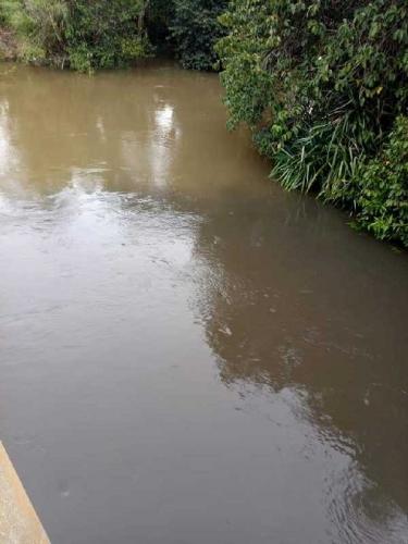 Sungai Gondai Tercemar Diduga Limbah PT PSJ, Dewan Desak DLH Pelalawan Turun Tangan