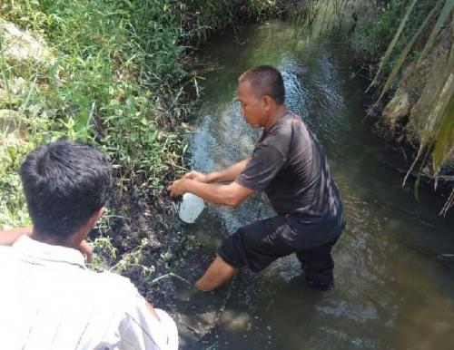 DLH Pelalawan Telusuri Asal Limbah yang Cemari Sungai Gondai