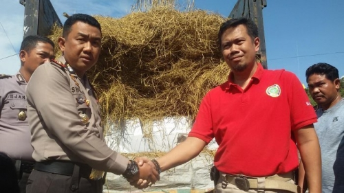 Pengiriman 3 Ton Daging Babi Hutan dari Sumatera ke Jakarta untuk Oplos Daging Sapi Berhasil Digagalkan