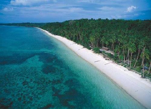 Pesona Pulau Rupat Pantai Eksotis Wisata yang Menjanjikan