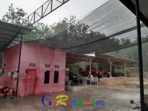 Disertai Angin Kencang, Hujan Mengguyur Telukkuantan