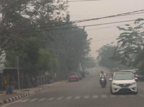 Asap di Kampar Makin Pekat, Titik Api Meningkat, DPRD Duga Disengaja