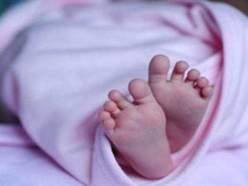 Ibu Melapor ke Polisi Bayi Kembarnya Diculik, Ternyata Dilemparkannya ke Kolam