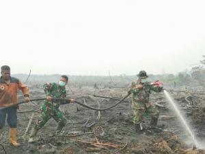 1.211 Hotspot Terdeteksi di Sumatera Pagi Ini, BMKG: Waspada Penurunan Kualitas Udara dan Jarak Pandang