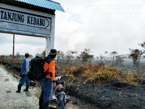 Kebakaran di Pulau Rangsang, Tim Gabungan Berjibaku Padamkan Api