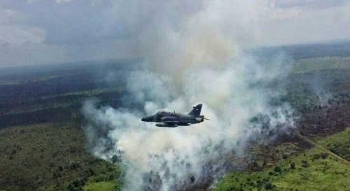 Titik Panas di Riau Meningkat Pagi Ini, 3 Firespot Muncul di Kuansing dan Bengkalis
