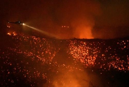 Kebakaran Hutan di California, Sekitar Seribu Rumah Terancam Terbakar, Warga Terpaksa Dievakuasi