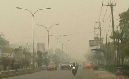 Sudah Diguyur Hujan, Kualitas Udara di Daerah Terdampak Asap Masih Tidak Sehat