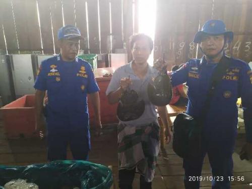 Ditpolairud Polda Riau Gagalkan Penyelundupan 1.500 Belangkas dari Rohil ke Malaysia