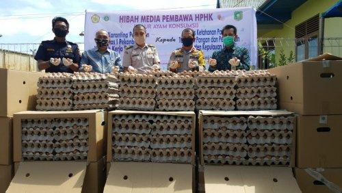Telur Ayam yang Diamankan Barantan Kelas I Pekanbaru Wilker Selatpanjang Dihibahkan ke DKPTPP Meranti