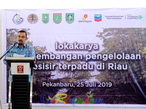Kerusakan Hutan Mangrove di Riau Akibat Deforestasi Capai 32.970 Ha