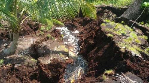 106 Kilometer Daratan di Kepulauan Meranti Riau Digerus Abrasi, Bibir Pantai Dekati Pemukiman