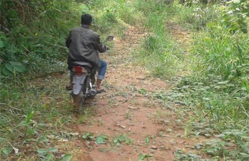 Jalan Perkebunan di Desa Pulau Terap Dipertanyakan