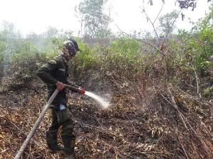 3 Hotspot Terpantau Citra Satelit di Bengkalis dan Dumai, Cuaca Berpotensi Hujan Lokal