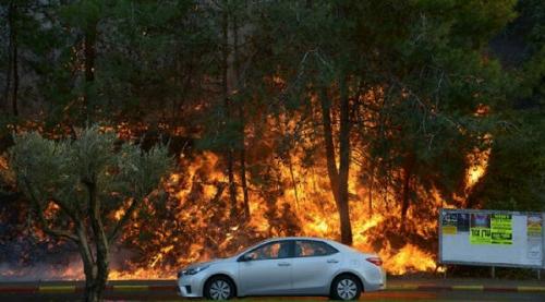 Wali Kota Haifa Sebut Hanya Tuhan yang Mampu Padamkan Kebakaran di Israel
