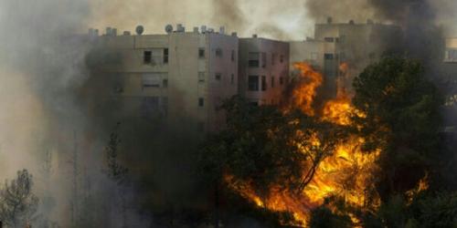 Palestina Bantu Padamkan Kebakaran Hebat yang Kepung Israel