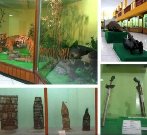 Museum Sang Nila Utama Riau Terus Berbenah, Sri Mecka: Kita Upayakan Pengunjung Betah