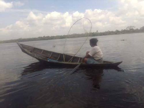 Dampak Matinya Puluhan Ribu Ikan, Nelayan Sungai Kampar Kehilangan Mata Pencaharian