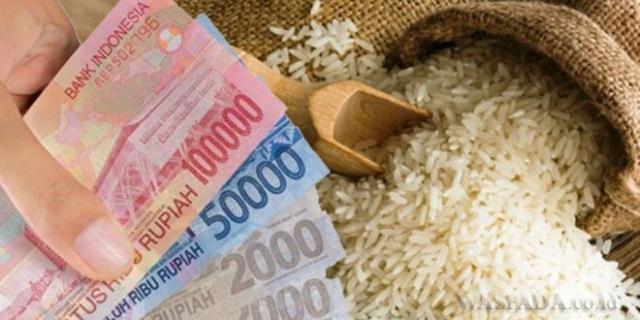 Bagi Masyarakat Kuansing yang Konsumsi Beras Solok Datuk, Maka Zakat Fitrah yang Harus Dibayar Sebesar Rp43.750
