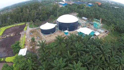 Asian Agri akan Bangun 20 PLTBg Hingga Tahun 2020 di Riau, Jambi dan Sumatera Utara