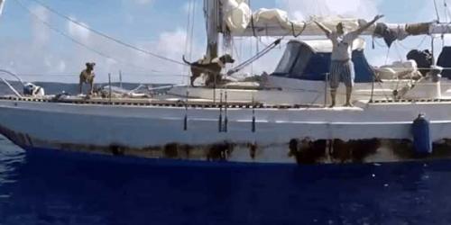 Terombang-ambing di Samudera Pasifik 5 Bulan, Jennifer dan Tasha Ditemukan Selamat, Begini Ceritanya Bisa Bertahan Hidup