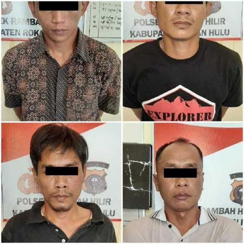 Belum Sempat Curi Sapi, 4 Pria Ini Ditangkap Personel Polsek Rambah