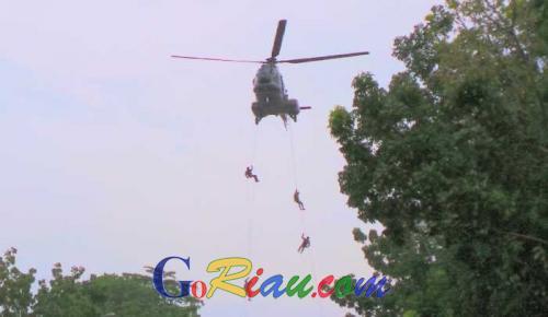 TNI AU Roesmin Nurjadin Pekanbaru bakal Turunkan Prajurit Khusus Buat Sergap Perambah Hutan dari Udara
