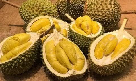 Lebih 500 Mahasiswa Dievakuasi Gara-gara Durian, Begini Ceritanya