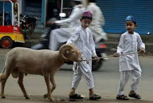 Pemkab - Kemenag Siak Keluarkan Tuntunan Pelaksanaan untuk Masyarakat saat Idul Adha