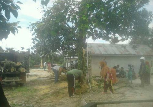 Inginkan Desanya Terang, Warga Padang Luas Langgam Gesa Pemasangan Listrik PPIDK