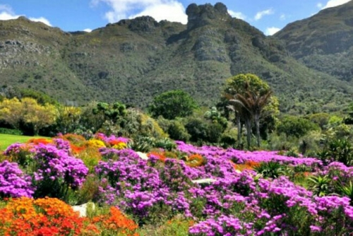 Inilah Penampakan Taman Paling Indah di Dunia