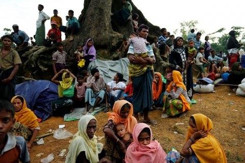 Ribuan Muslim Rohingya Sambut Idul Adha dalam Ketakutan, Terjebak di Tengah Konflik Bersenjata
